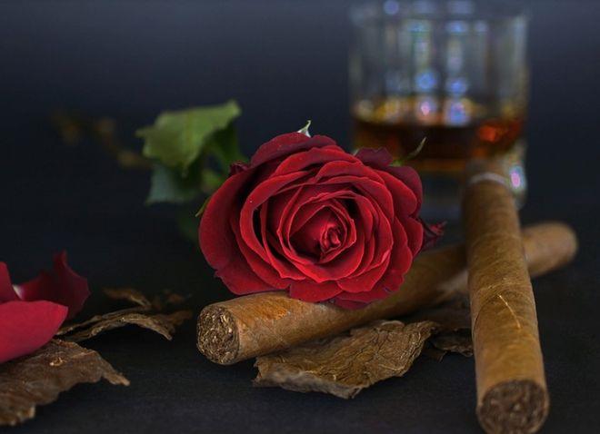 Текила, сигара и розы