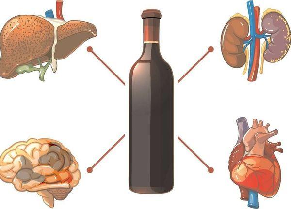 Органы на которые влияет алкоголь